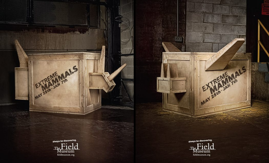 Agency: DDB        Client: The Field Museum