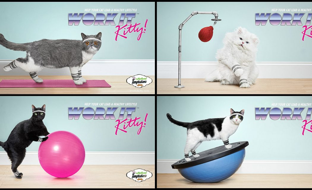 Agency: DDB        Client: Temptations Cat Treats